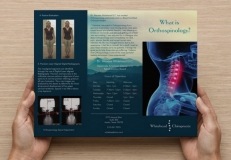 <p>Brochure Design for Whitehead Chiropractic; Covering the Unique Treatment of Orthospinology</p>
