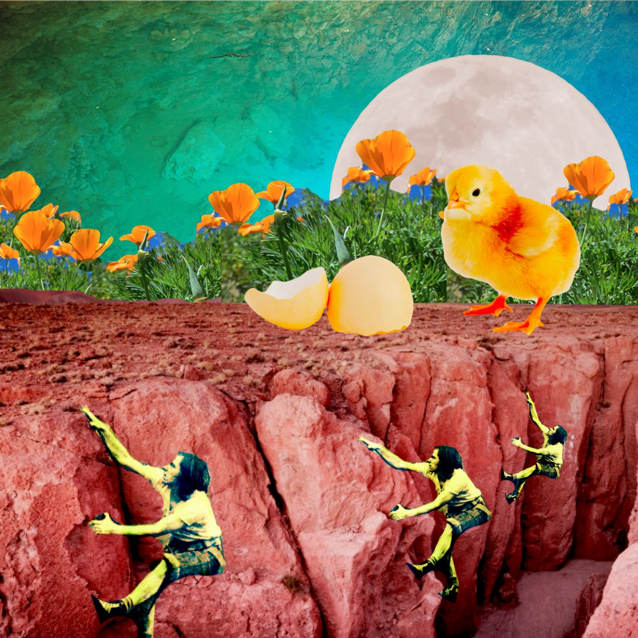 Hatched, art collage by Carrie Becker