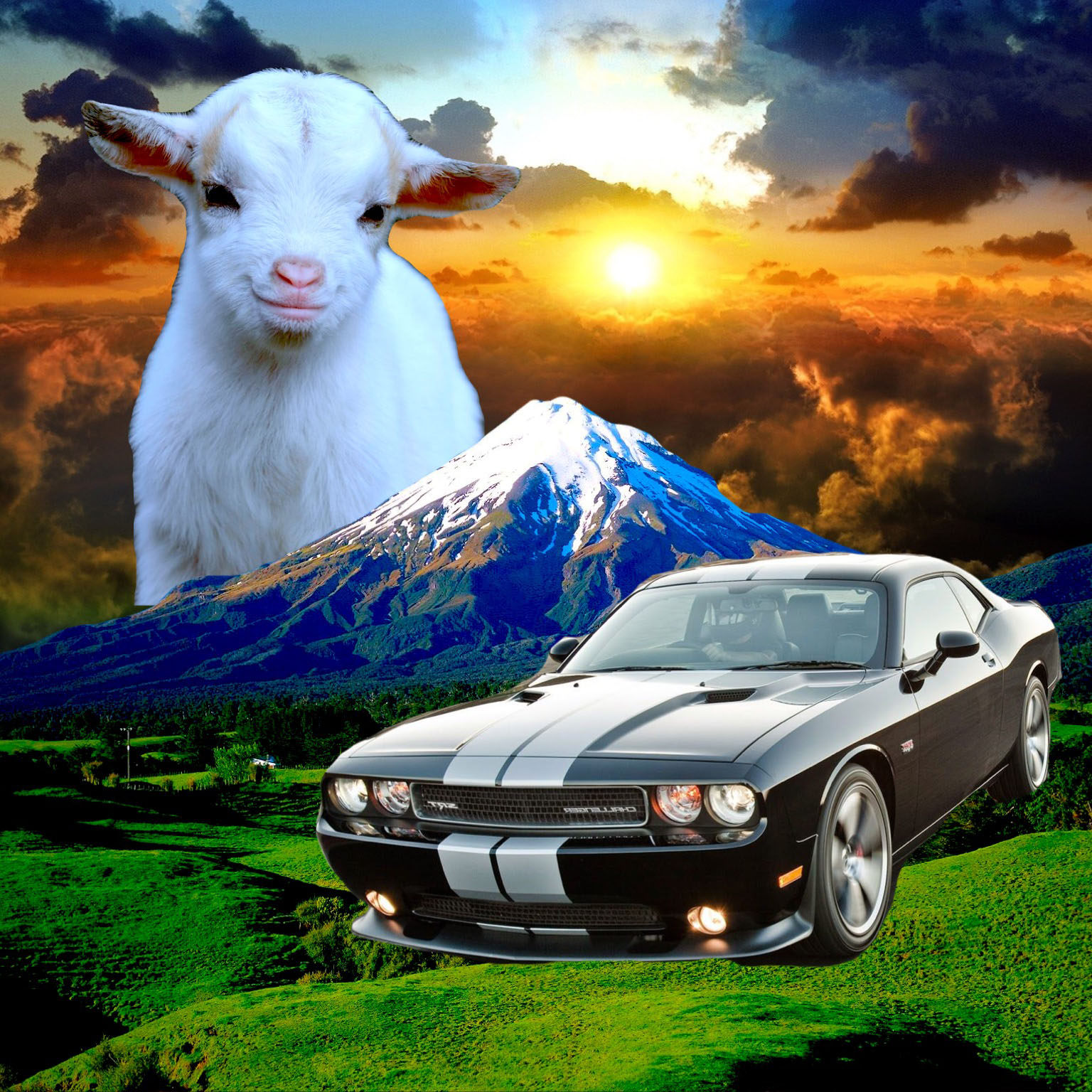 For Beth, Lamb and Challenger